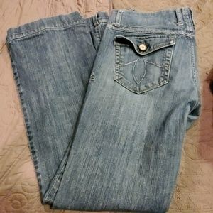 Size 29 Level 99 Jeans